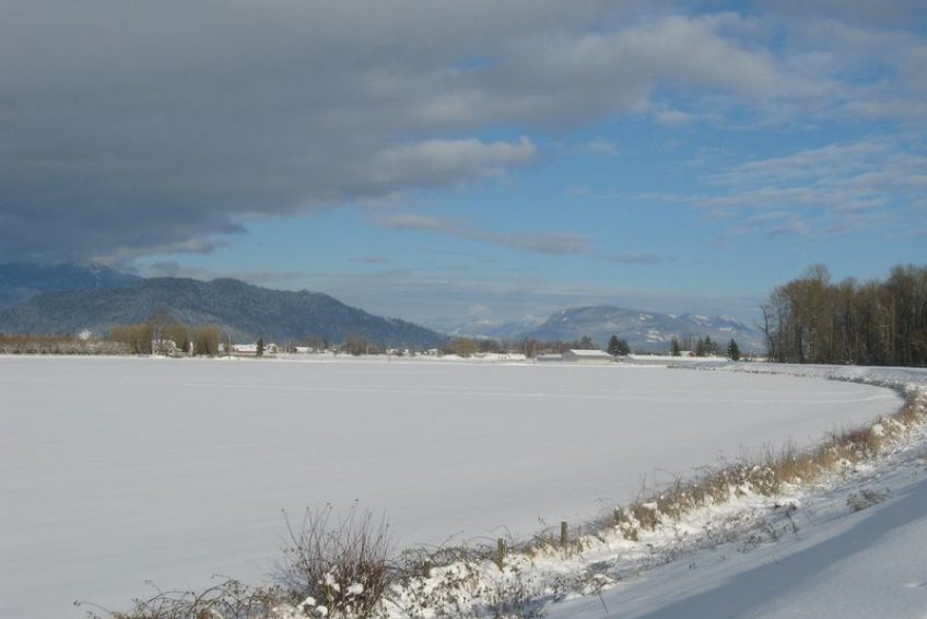 Winter scene from the Trans Canada trail