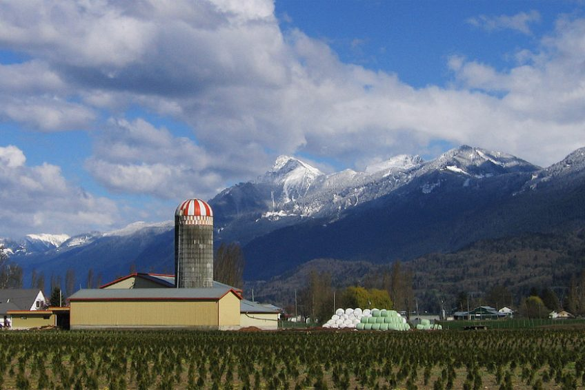Farm with Mount Cheam in the background | Credit: Ian Meissner CC BY 2.0 Wikimedia