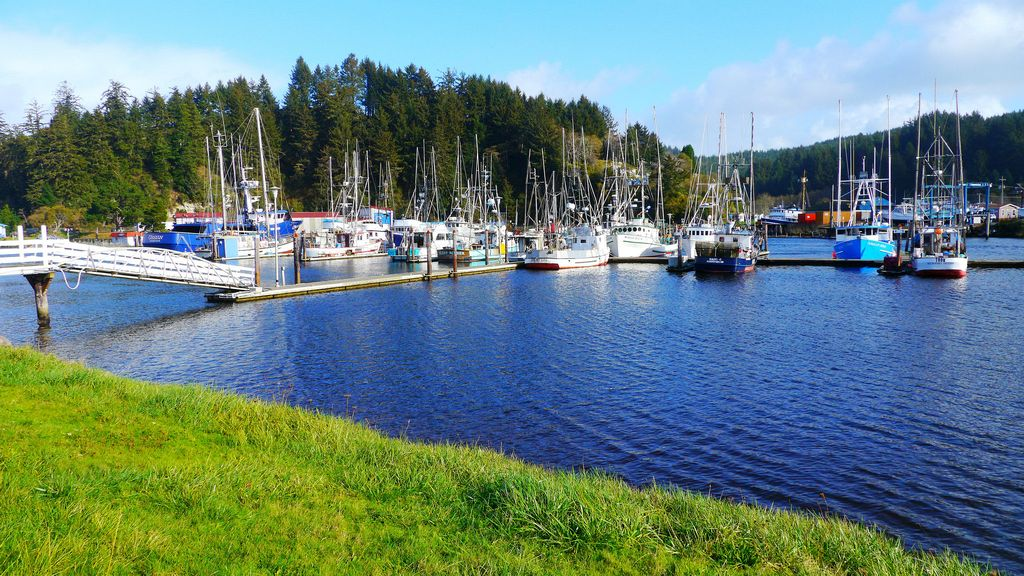 Salmon Harbour Marina in Winchester Bay