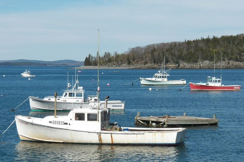 Bar Harbor fishing boats