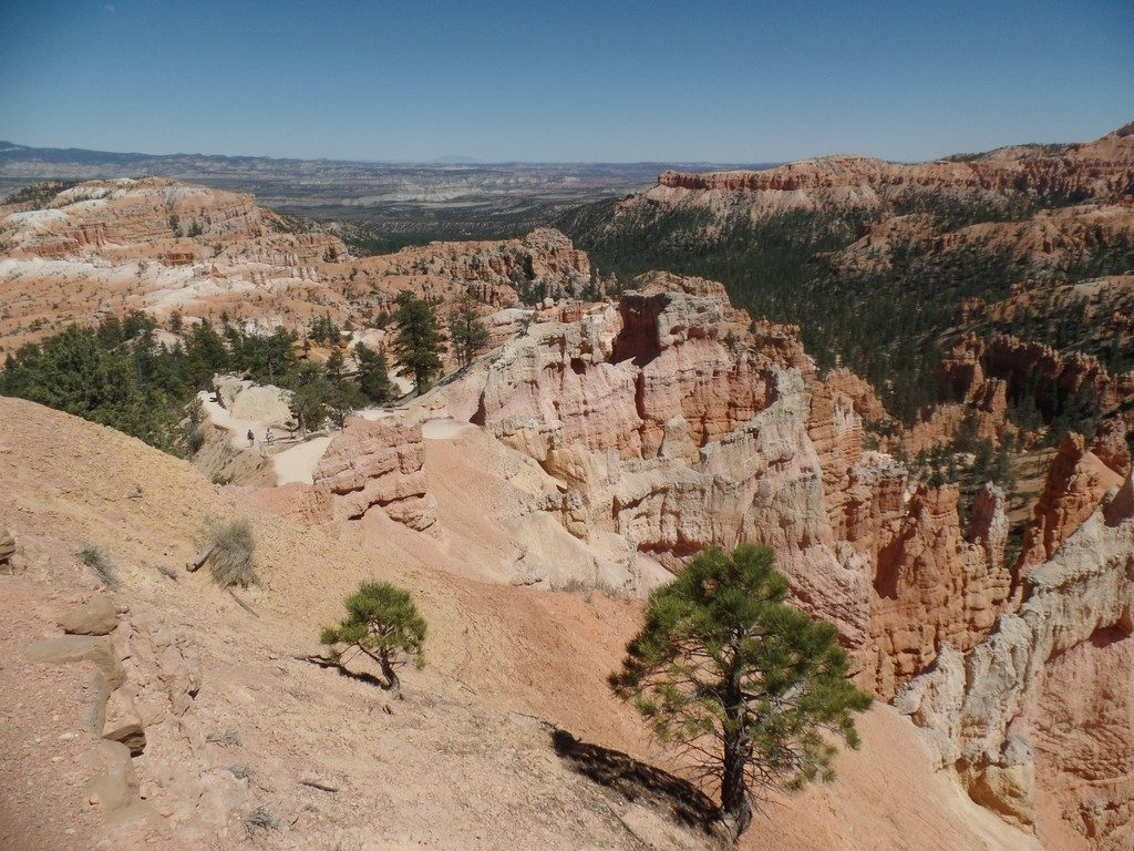 One of many hiking trails that lead down into Bryce Canyon